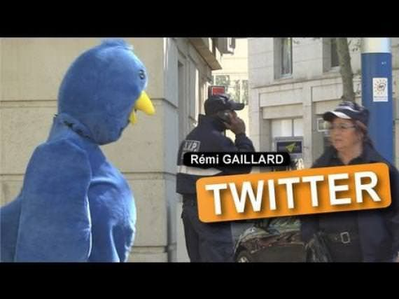 remi gaillard animals strike back