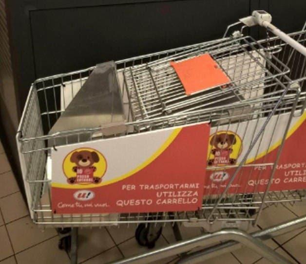 cao-supermercado5