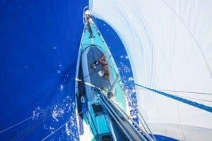 sailing-cat-travelling-world-liz-clark-9
