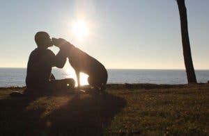 dog-cancer-road-trip-bella-robert-kugler-10