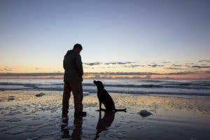 dog-cancer-road-trip-bella-robert-kugler-12
