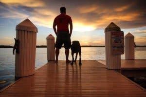 dog-cancer-road-trip-bella-robert-kugler-2