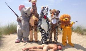 remi safari