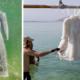 salt-dress-dead-sea-salt-bride