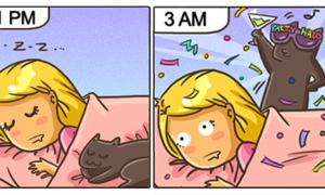 funny-cat-comics