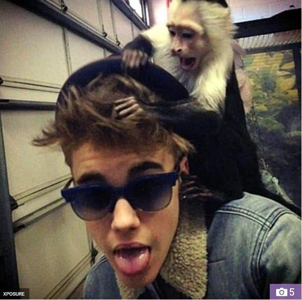 justin-macaco